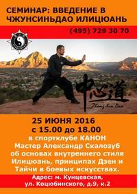 Семинар Александра Скалозуба об основах Илицюань, 25 июня 2016